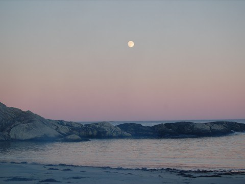 Captivating moonrise over Buchanan's Beach